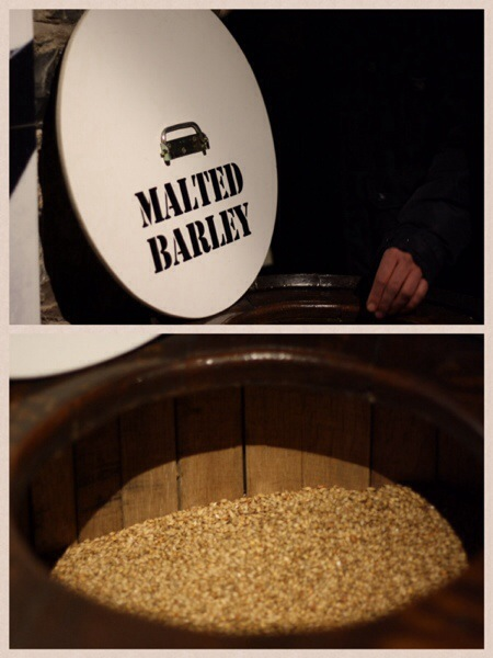 Making of Jameson Whiskey Barley