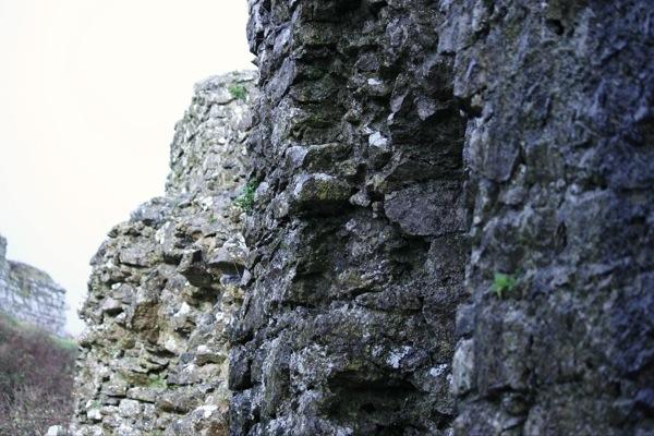 Dunamase Castle Wall
