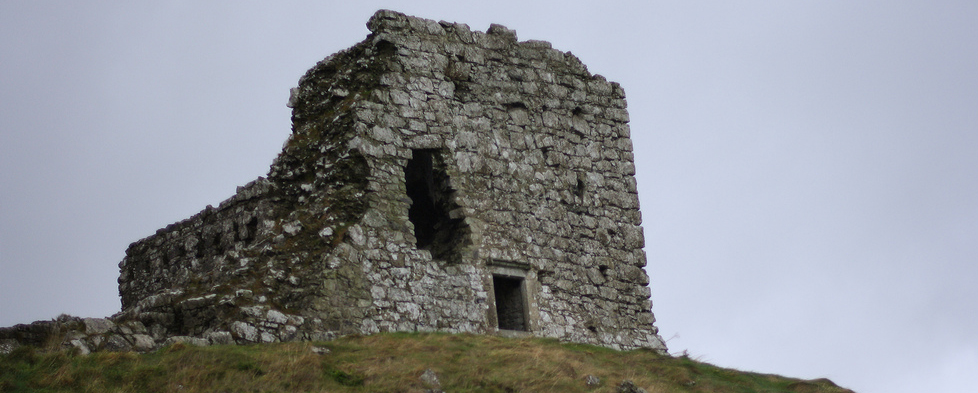 The Rock of Dunamase Castle