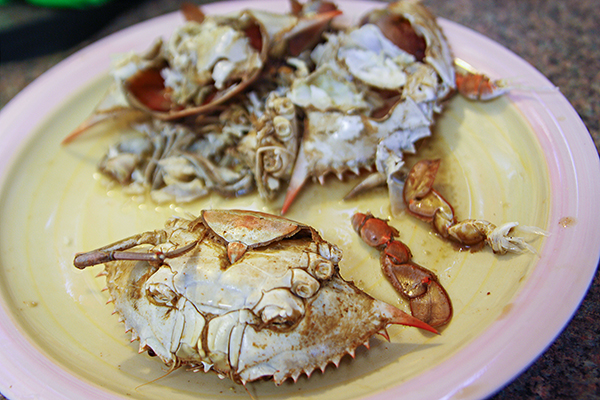 How to eat a blue crab