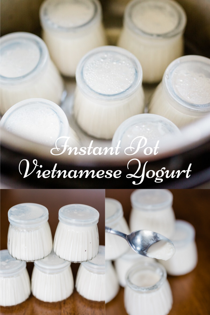 Instant Pot Vietnamese Yogurt Recipe